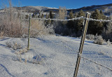 Frosty Barb-Wire Fence