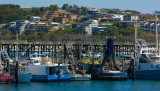 Coffs Harbour NSW IMG_4359.jpg