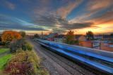Morning train passing Selby St IMG_5864.jpg