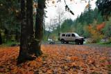 Leaves and van, Nooksack River, near Glacier, WA