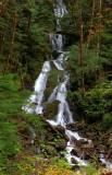 Waterfall near Glacier, WA, HDR image.