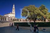 Azinheira (Árvore de Interesse Público)