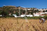 Os Campos de Aljezur