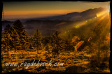 Sunrise at Boulder Mountain - Dixie National Forest