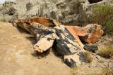 Petrified Burned Log (2415)