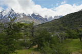 View of Torres del Paine (3561)