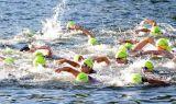 1/2 mile swim