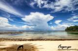 Daanglungsod Beach