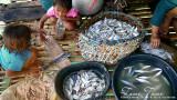 Badjaos preparing fish to dry