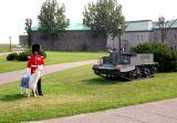 A ceremonial guard and the mascot of the Royal 22nd Regiment, Batisse the goat - at  the Citadel (la Citadelle).