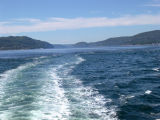 View from our boat on the St. Lawrence River heading to the whale watching areas.