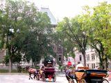 City Hall (l'Hotel-de-Ville) on Rue de Jardins  in the Upper Town section of Old Québec.