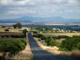 Road to Bloemfontein