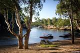 5441- Murray River Echuca Moama NSW