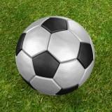 Leather_Soccer_Ball.jpg