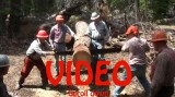 Sawing Video