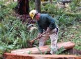Cedar Planks 006f.jpg