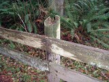 DNWR Fence Condition  Upland Pedestrian Trail 1t