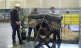Jim Anderson & Bill Kassel doemonstrating cargo packing