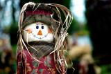 The Friendly Scarecrow