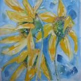 sunflower £150 SOLD