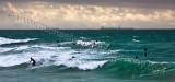 Cottesloe Beach Surfers