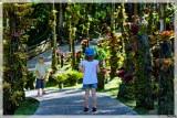 Balade au jardin de Balata