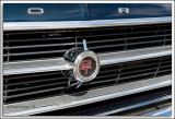 1966 Fairlane GT Grille.jpg