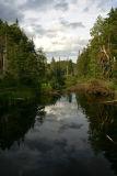 Wilderness near the Sagamore Lake.