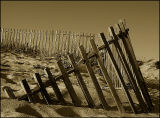 ... Fence ...