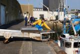 Retour de pêche à Concarneau
