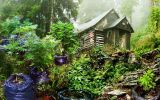 doorstep-garden.jpg