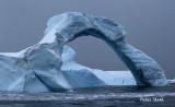Arch Ice.jpg