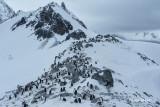 Chinstrap Colony.  Mountain peaks.jpg