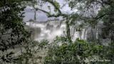 Iquazu falls Argentina side.jpg