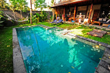 Mango Tree Pool
