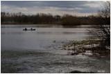 Ried inondé 12/2012