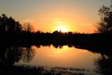 Morton Arboretum, Lisle, IL - sunset - Meadow Lake