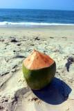 Indian Corona, Coconut water, Marari beach, Mararikulam, Kerala