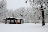 Winter 2013, Deer Grove Forest Preserve, Palatine, IL