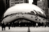 Chicago Cloud Gate, Black and White
