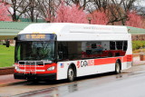 CATA Bus, Penn State University