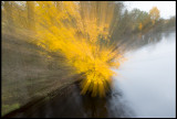 Autum colors at River Lagan near Ljungby