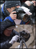 Different ways of dealing with Japanese Monkey photography