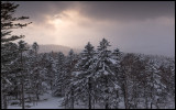 A snowy morning in central Hokkaido
