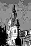 St Louis Steeple #229