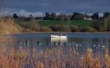 Draycote Water During November 2012
