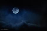 Moody Moon (Week 5)