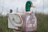 Duckmail