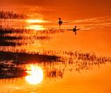 Sunset Manoeuvres
